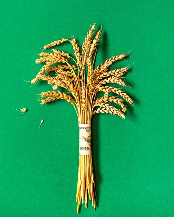 imagen de Caja Rural de Soria